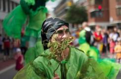 Evergreens_02