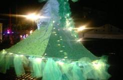 Evergreens_08
