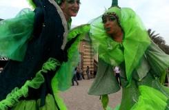 Evergreens_09