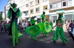 Evergreens_11